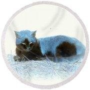 Kitty Blue IIII Round Beach Towel