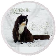 Kitty Cat In The Snow Round Beach Towel