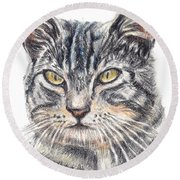 Kitty Kat Iphone Cases Smart Phones Cells And Mobile Cases Carole Spandau Cbs Art 337 Round Beach Towel