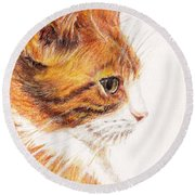 Kitty Kat Iphone Cases Smart Phones Cells And Mobile Cases Carole Spandau Cbs Art 338 Round Beach Towel