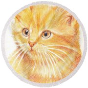 Kitty Kat Iphone Cases Smart Phones Cells And Mobile Cases Carole Spandau Cbs Art 339 Round Beach Towel