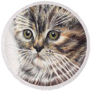 Kitty Kat Iphone Cases Smart Phones Cells And Mobile Cases Carole Spandau Cbs Art 343 Round Beach Towel