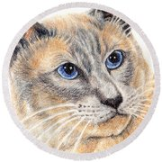 Kitty Kat Iphone Cases Smart Phones Cells And Mobile Cases Carole Spandau Cbs Art 346 Round Beach Towel