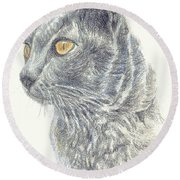 Kitty Kat Iphone Cases Smart Phones Cells And Mobile Cases Carole Spandau Cbs Art 347 Round Beach Towel