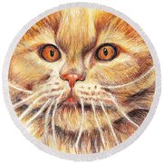 Kitty Kat Iphone Cases Smart Phones Cells And Mobile Cases Carole Spandau Cbs Art 351 Round Beach Towel