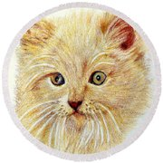 Kitty Kat Iphone Cases Smart Phones Cells And Mobile Phone Cases Carole Spandau 301 Round Beach Towel
