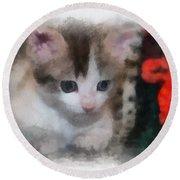 Kitty Photo Art 01 Round Beach Towel