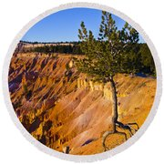 Know Your Roots - Bryce Canyon Round Beach Towel