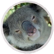 Koala Face Round Beach Towel