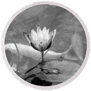 Koi Pond With Lily Pad And Flower Black And White Round Beach Towel