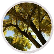 La Boca Ranch Cottonwood Round Beach Towel