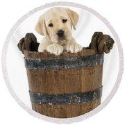 Labrador Puppy In Bucket Round Beach Towel