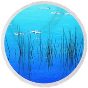 Lacassine Pool Reeds Round Beach Towel