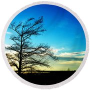 Lacassine Tree Round Beach Towel