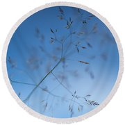 Lacy Patterns Of Grass Round Beach Towel