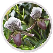 Lady Slippers Round Beach Towel