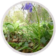 Lady Spencer's Bluebell Round Beach Towel