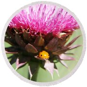 Ladybug And Thistle Round Beach Towel