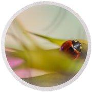 Ladybug II Round Beach Towel