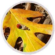 Ladybug Leafing By Diana Sainz Round Beach Towel