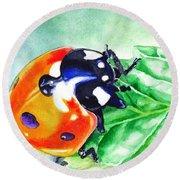 Ladybug On The Leaf Round Beach Towel