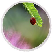 Ladybug With Mimosa Round Beach Towel