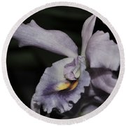Laeliocattleya Blue Boy 1 Of 2 Round Beach Towel