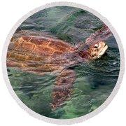 Lager Head Turtle 001 Round Beach Towel