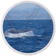Laguna Whale Round Beach Towel