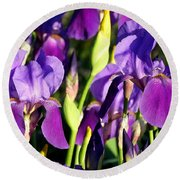 Lake Country Irises Round Beach Towel