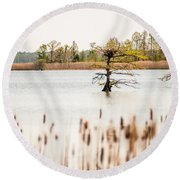 Lake Mattamuskeet Nature Trees And Lants In Spring Time  Round Beach Towel