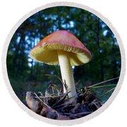 Lake Powhattan Mushroom Round Beach Towel