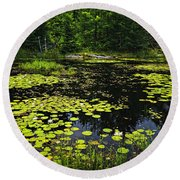 Lake With Lily Pads Round Beach Towel