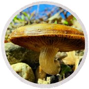 Lakeside Mushroom  Round Beach Towel