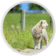 Lamb On The Farm Round Beach Towel