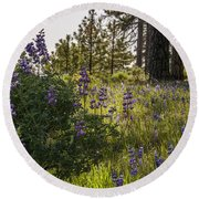 Land Of The Lupines Round Beach Towel