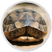 Land Turtle Hiding In Its Shell  Round Beach Towel