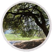 Landscape At The Jack London Ranch In The Sonoma California Wine Country 5d24583 Round Beach Towel