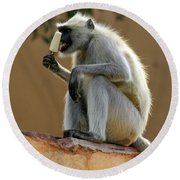 Langur With Kulfi Round Beach Towel