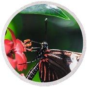 Laparus Doris Butterfly Round Beach Towel