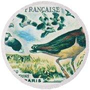 Lapwings Study Of Migration Museum Of Paris Round Beach Towel