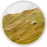 Large Flock Of Herded Sheep On A Steep Hillside Round Beach Towel