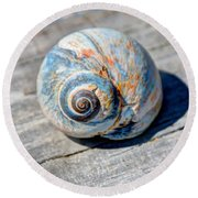 Large Snail Shell Round Beach Towel