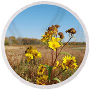 Last Blooms Before Fall Round Beach Towel
