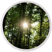 Last Light In The Forest Round Beach Towel