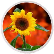 Last Sunflower Horizontal Round Beach Towel