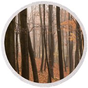 Late Autumn Beech Round Beach Towel