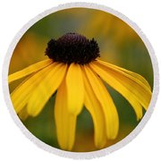 Late Summer Blooms Round Beach Towel