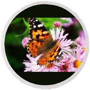 Late Summer Painted Lady Round Beach Towel