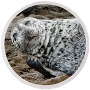 Laughing Seal Round Beach Towel